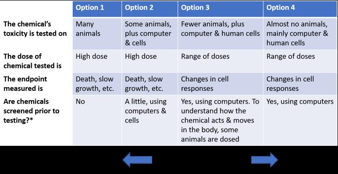 4 options